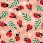 Loveable Ladybug